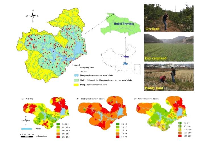 农田土壤磷素空间分布和污染风险评价研究获进展-www.ravenmoonsmedia.com北纳标物网